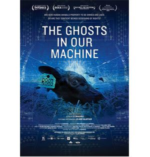 The Ghosts in Our Machine