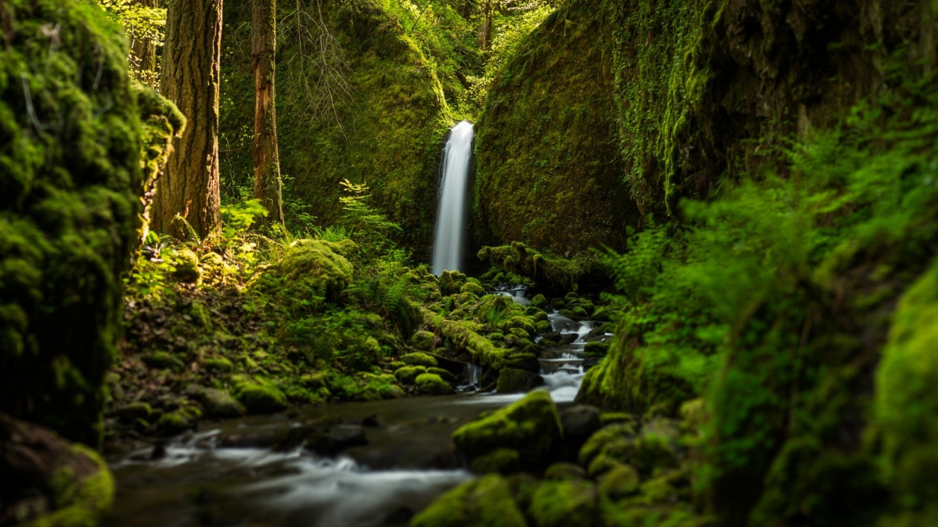 Ravishment: Beautiful Nature - Water Fall HD Latest Wallpaper 1080p