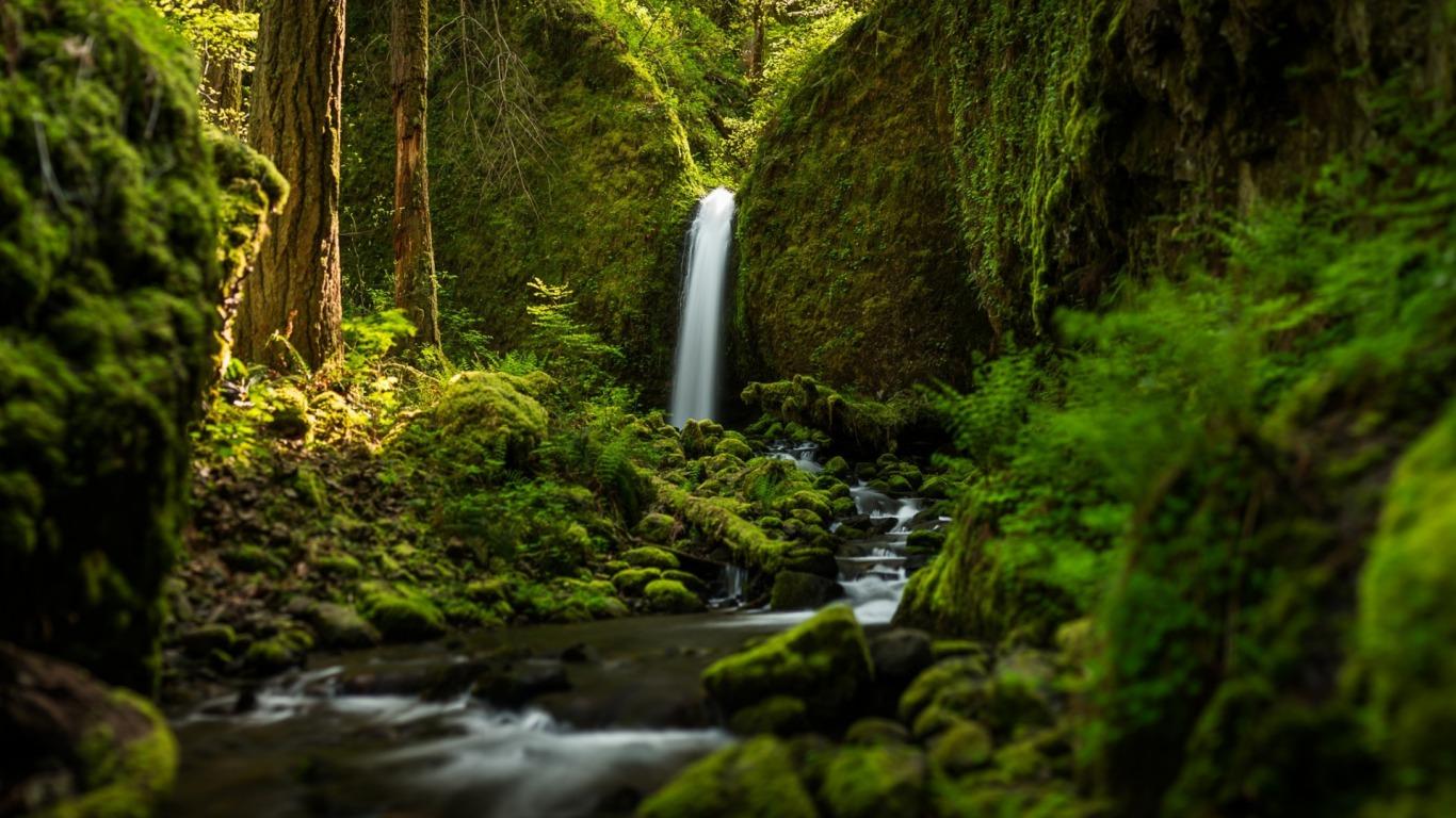 Ravishment Beautiful Nature Water Fall Hd Latest