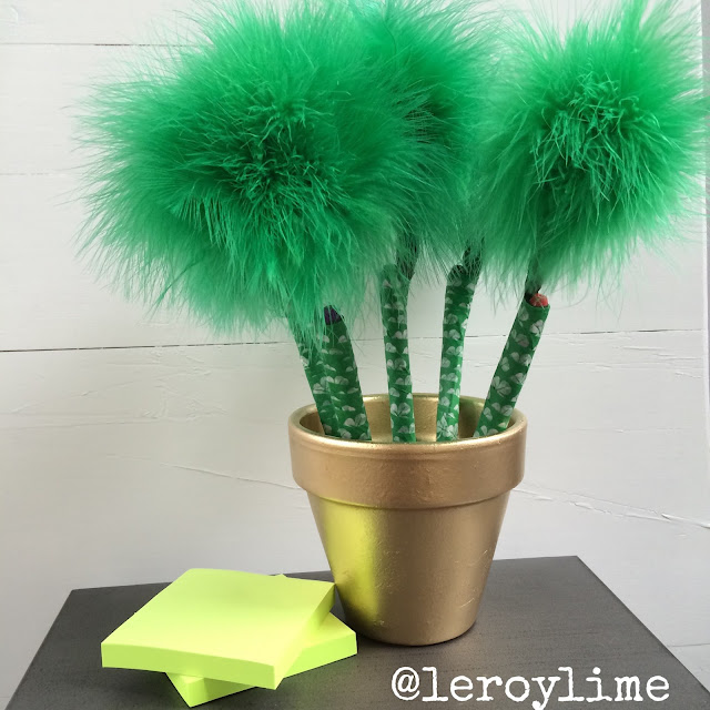 St Patrick's Day Banner & Pot of Gold - LeroyLime