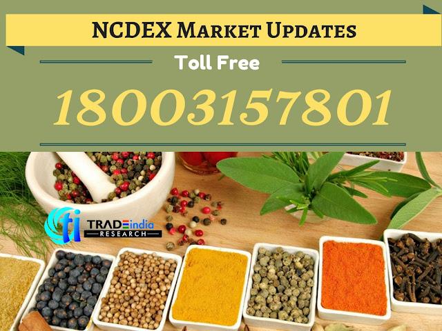 NCDEX Market Updates