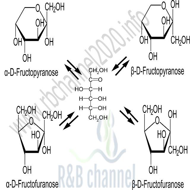 الاشكال الحلقية D-فركتوز