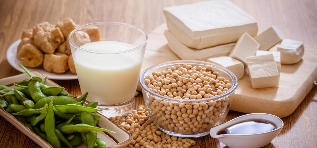 Pengganti Protein Daging Untuk Masakan Vegetarian Annaamat Com