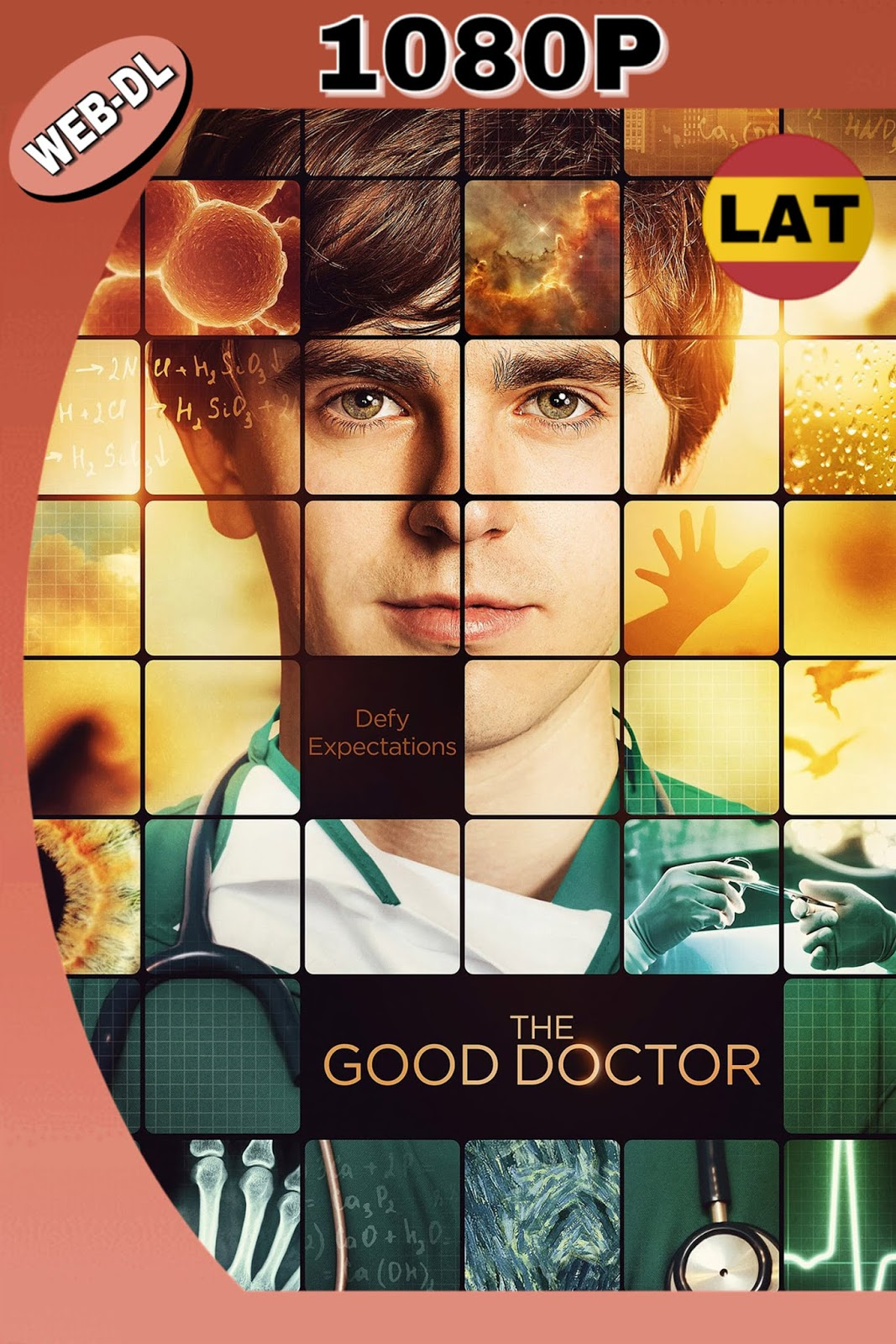 THE GOOD DOCTOR 2017 TEMPORADA 1 AMZN WEBDL 1080P 12GB.mkv