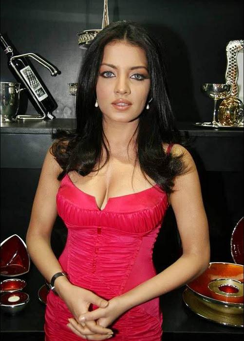 Sexy Photos Of Celina Jaitely