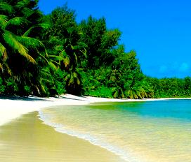 Conhecer as praias paradisiacas do Caribe