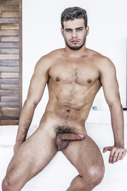 Black Hd Gay Porn
