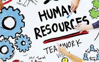 Human Resources Trainee | وظائف