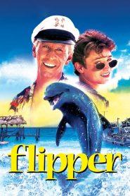 Flipper (1996) Pelicula Completa online latino hd