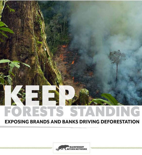 Keep Forests Standing!