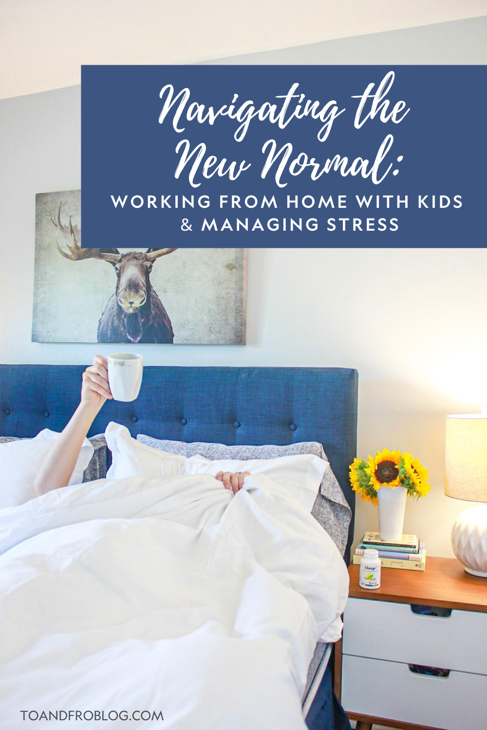 Navigating the New Normal - Working From Home with Kids & Managing Stress