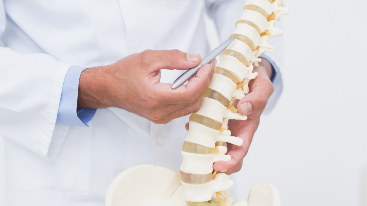 [RESEARCH] A Cross-sectional Analysis of Persistent Low Back Pain Using Correlations Between Lumbar Stiffness Pressure Pain Threshold and Heat Pain Threshold - themanualtherapist.com