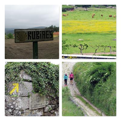 paisagem rural e peregrinas de Santiago