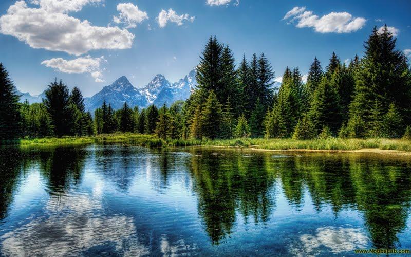 Beautiful Nature Wallpapers Hd