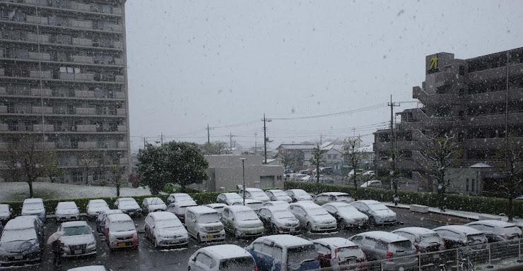 季節外れの雪に覆われた駐車場の車