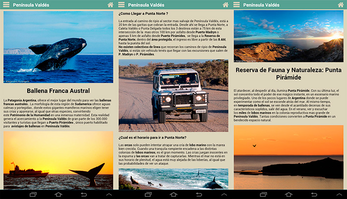 APP Traveler's Guide to Valdes Peninsula Patagonia Argentina