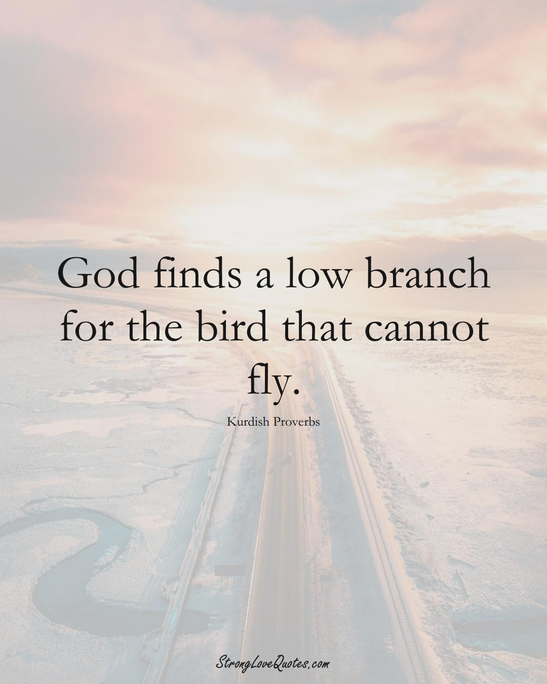 God finds a low branch for the bird that cannot fly. (Kurdish Sayings);  #aVarietyofCulturesSayings