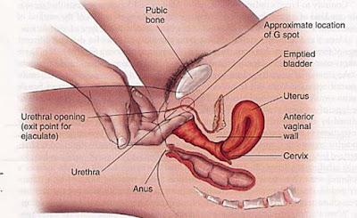 Quan hệ tình dục bằng tay như thế nào cho hiệu quả nhất?