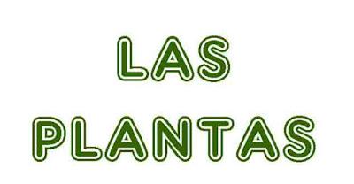 https://cplosangeles.educarex.es/web/quinto_curso/naturales_5/plantas_5/plantas_5.html