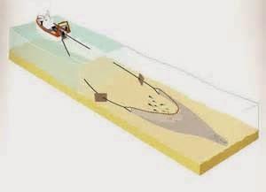 Le chalutier peut traîner son chalut entre deux eaux (chalutage pélagique) ou sur le fond (chalutage de fond).
