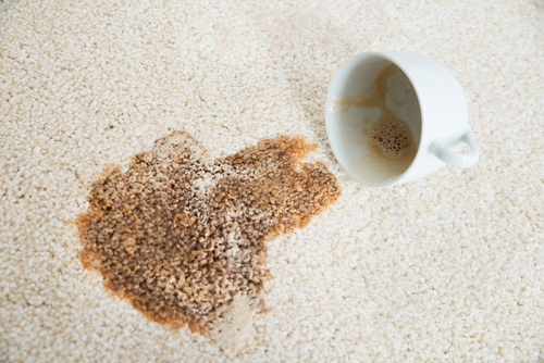 Bsolute Cleaning Useful Tips On Removing Stains From Carpet
