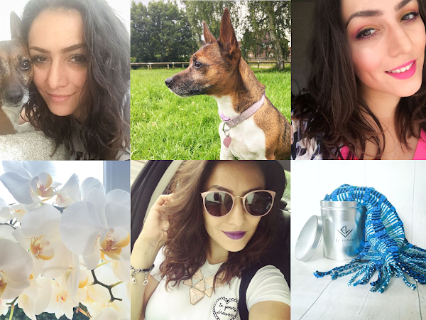 Life Through Instagram | July 2016