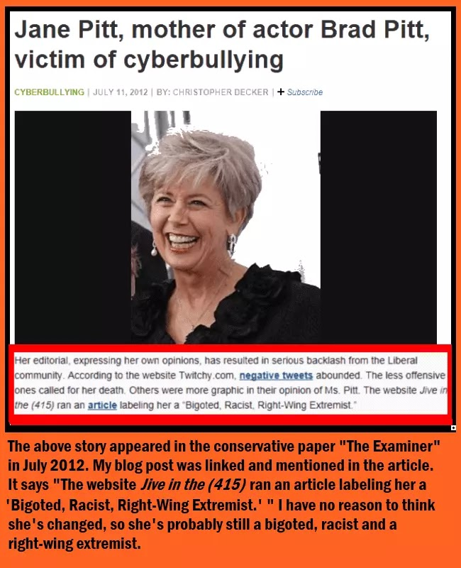 A screenshot of the Examiner newspaper story falsely accusing Roy Steele of cyberbullying