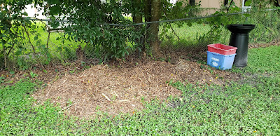 Composting Free Woodchips Pile
