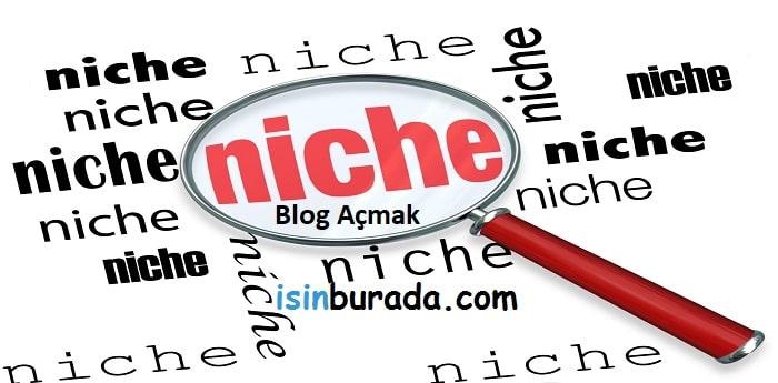 Niche Blog Açmak