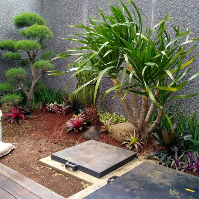 Tukang taman bojonegoro