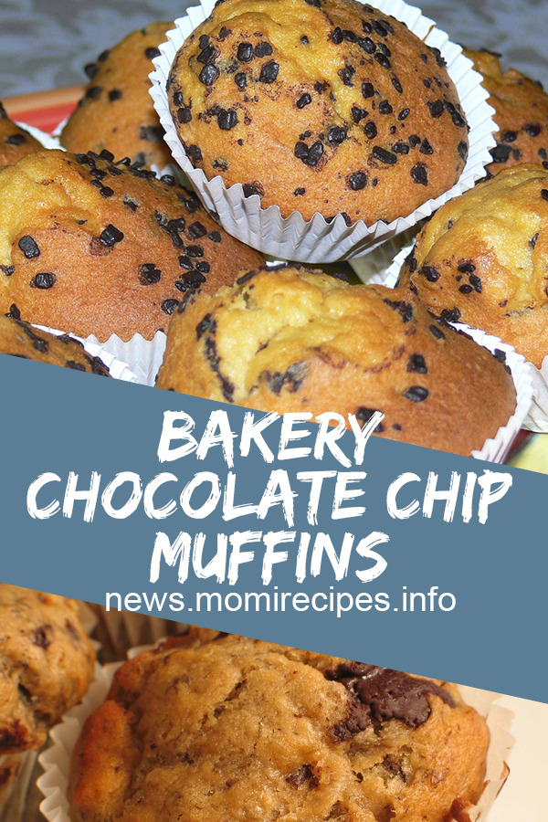 Chocolate Chip Muffins | dessert, dessert recipes, easy dessert recipes, easy desserts, dessert dishes, desserts to make, desserts recipes, easy baking recipes, easter desserts, easy desserts to make, dessert ideas, holiday desserts, quick and easy desserts, quick desserts, healthy desserts, simple desserts, fruit desserts, yummy desserts, good desserts. #chocolate #chip #muffins #cake #desserts