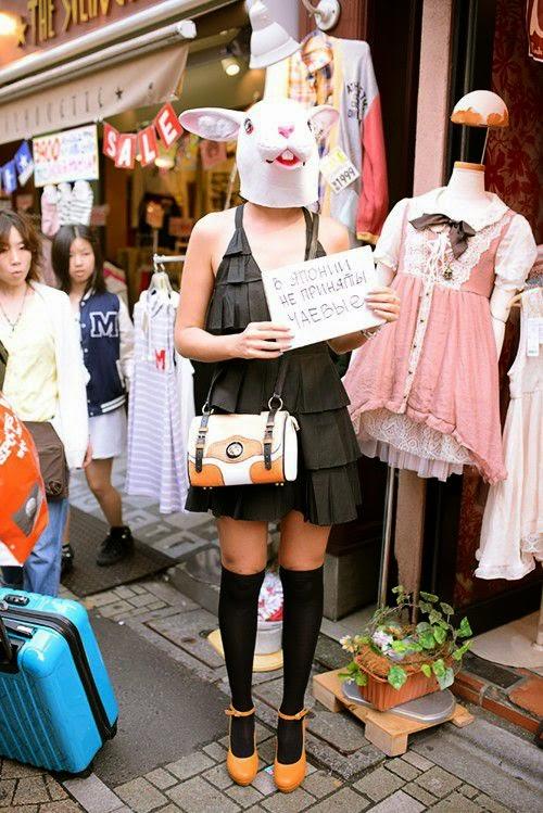 Япония,купить путевку в Японию, туризм в Японию, японские традиции,японские дороги,купить путевку,Japan,buy a ticket to Japan, travel to Japan, Japanese customs,Japanese roads,buy a ticket