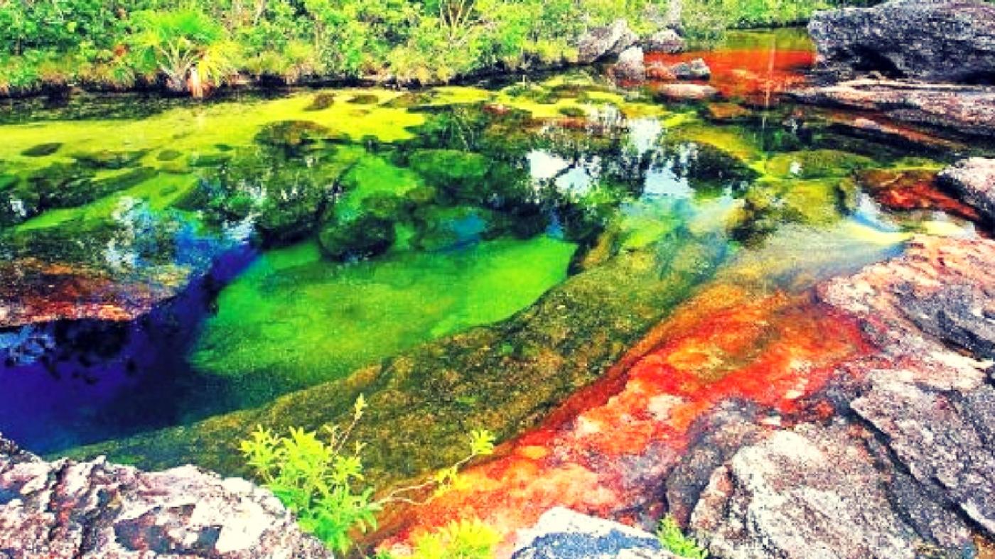 Rio Caño Cristales