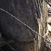 Βίντεο: Το επάγγελμα του υλοτόμου στην Αλμωπία