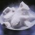 التسامي في المواد الصلبة Sublimation of Solids
