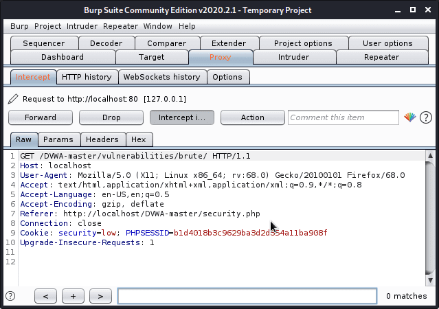 Burp suite proxy setup