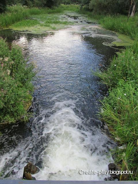 лесной ручей Гатчина