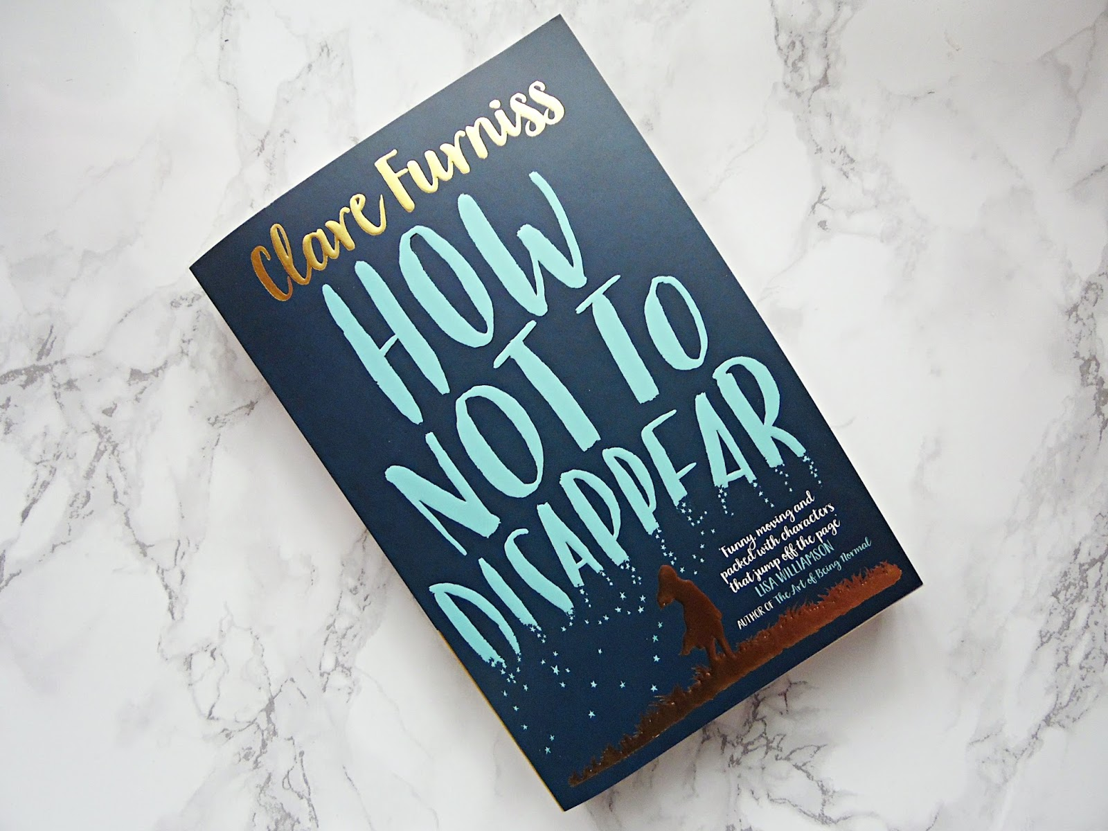 How Not to Disappear Book Review