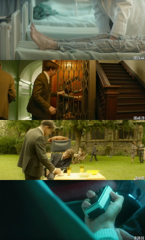 The Theory Of Everything 2014 BRRip 720p 480p Dual Audio Hindi English Full Movie Download