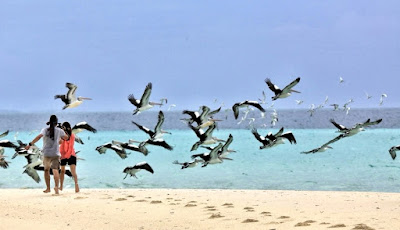 Pantai Ngurtafur Key Evav