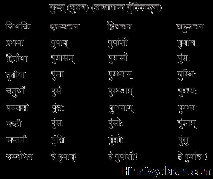 पुम्स् शब्द रूप संस्कृत में – Pums Shabd Roop In Sanskrit