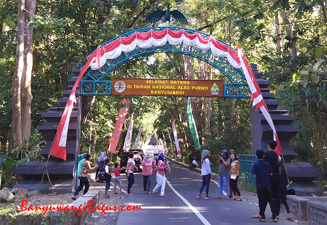 Pintu gerbang Alas Purwo, Banyuwangi.