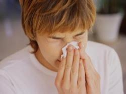 3 bài thuốc chữa viêm mũi dị ứng