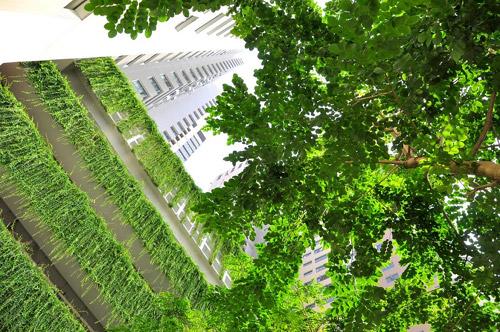 Không gian xanh bất tận tại dự án Mulberry Lane