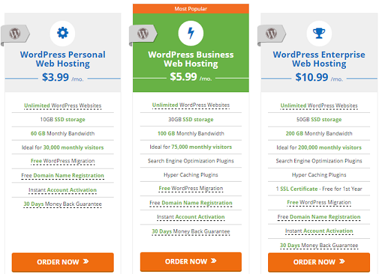 hosting, wordpress cms