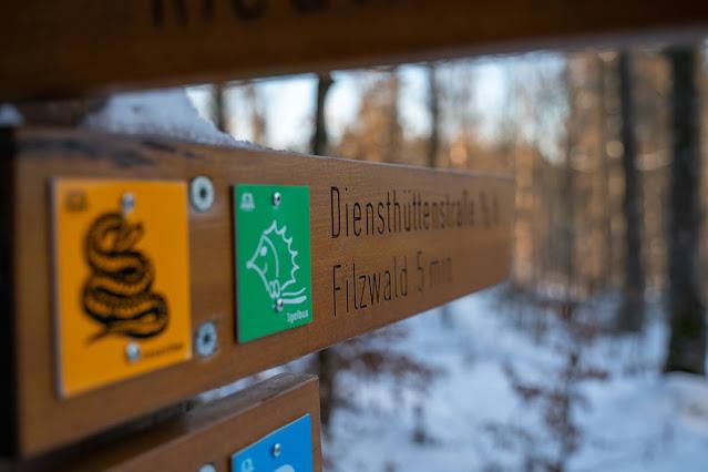 Rundweg Kreuzotter | Hochmoor Filzwald / Kloster Filz | Nationalpark Bayerischer Wald 06