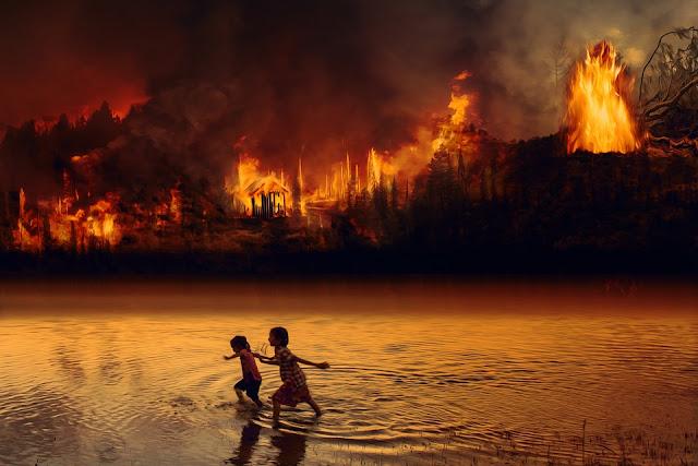 akibat kebakaran hutan asapnya sampai kenegara tetangga