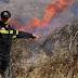Νέα πυρκαγιά σε δασική έκταση στην Αρκαδία