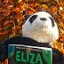 Eliza i jej potwory | Francesca Zappia