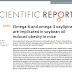Oxilipinas ômega-6 e ômega-3 estão implicadas na obesidade induzida por óleo de soja.